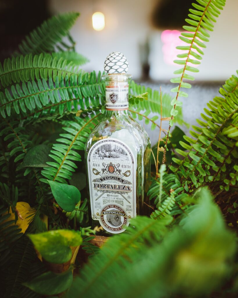 fortaleza tequila and ferns
